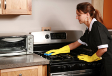 oven and fridge cleaning